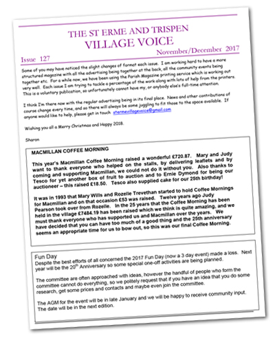Village Voice issue 127